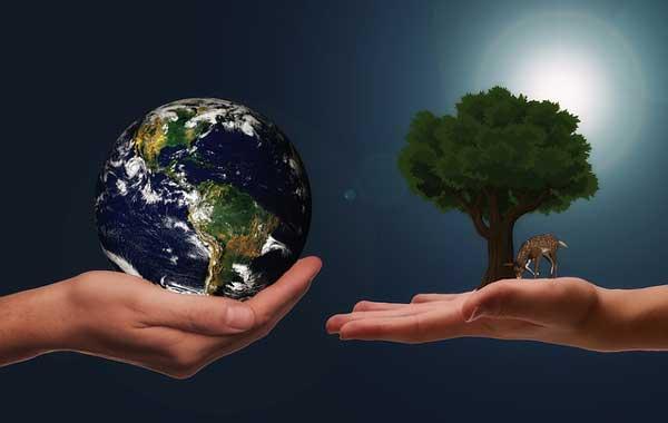 Nachhaltigkeit im eigenen Unternehmen
