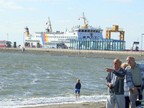 Fotos Sommer am Nordseedeich